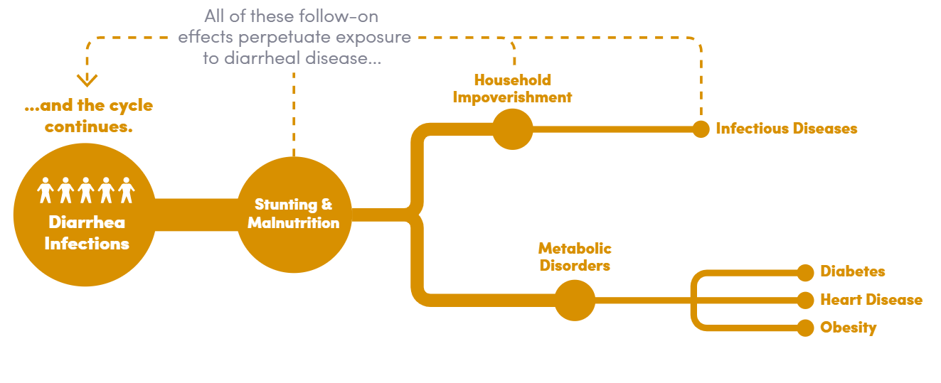 Infographic depicting long-term consequences of diarrheal infections